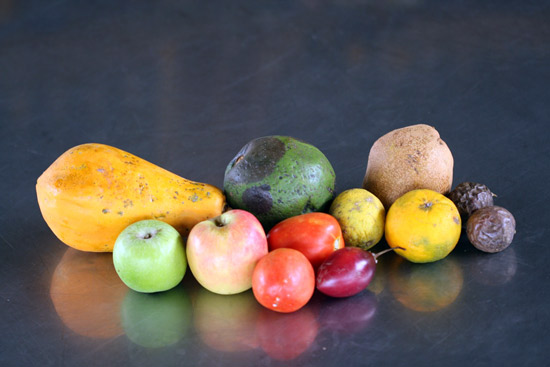 Fruit as a result of pollinators