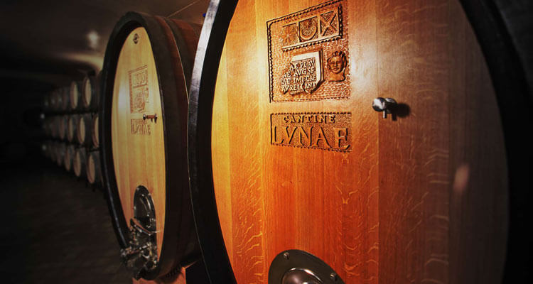The wine cellars at Ca' Lvnae Winery in Liguria