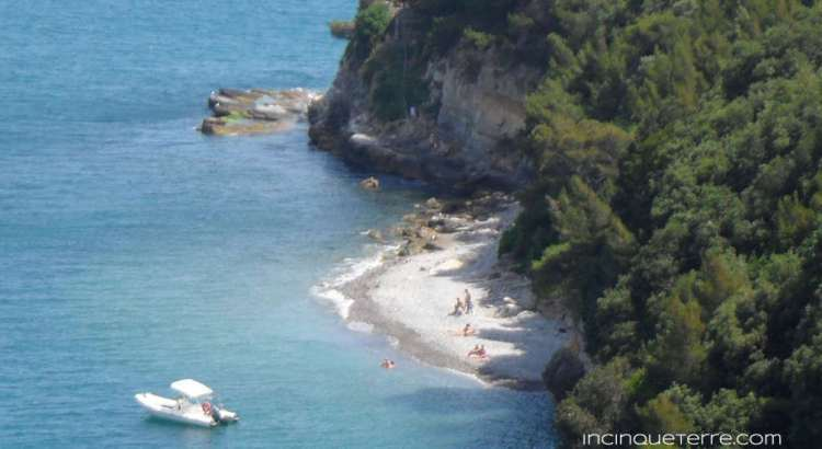 A beach on Palmaria Island. Image from www.incinqueterre.com