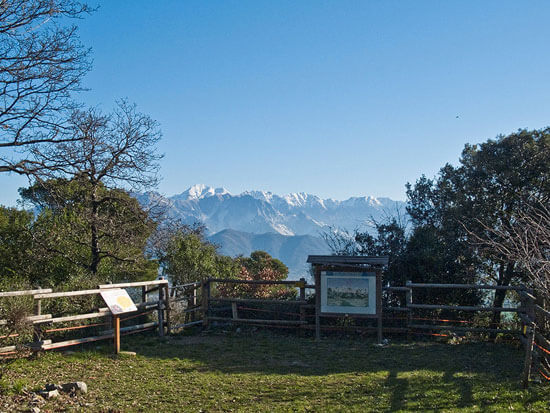 View of the Apuan Alps from Montemarcello Botanical Garden