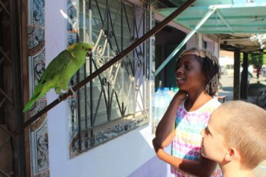 The resident parrot could say 'Hola'. The kids liked that.