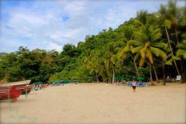 Tortuga Island Montezuma Costa Rica - 110