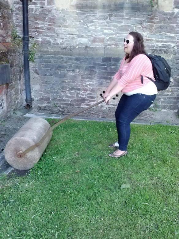 Pulling Plow