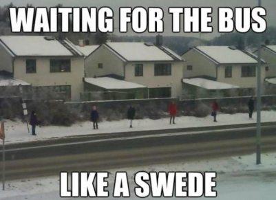 swede-meme-2
