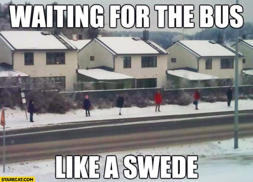waiting-for-the-bus-like-a-swede.jpg