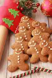 Tasty Vegan gingerbread cookies
