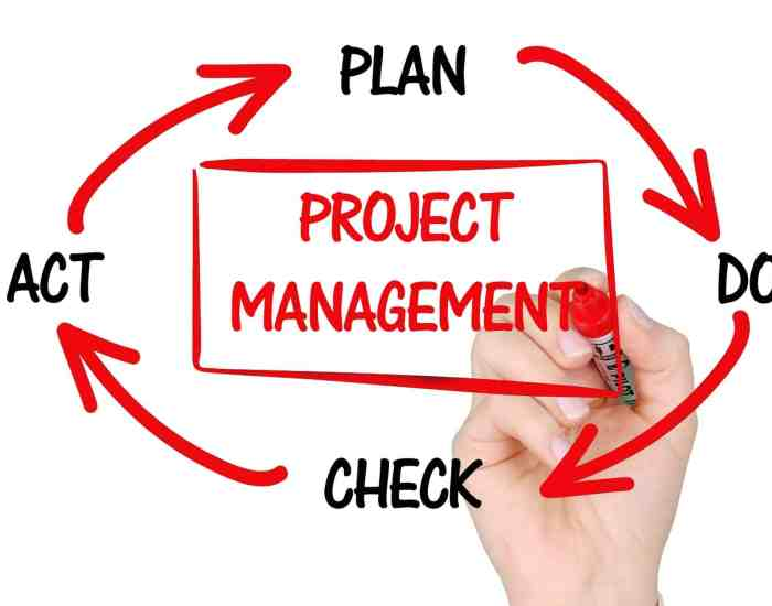 Project Management Tool for startup