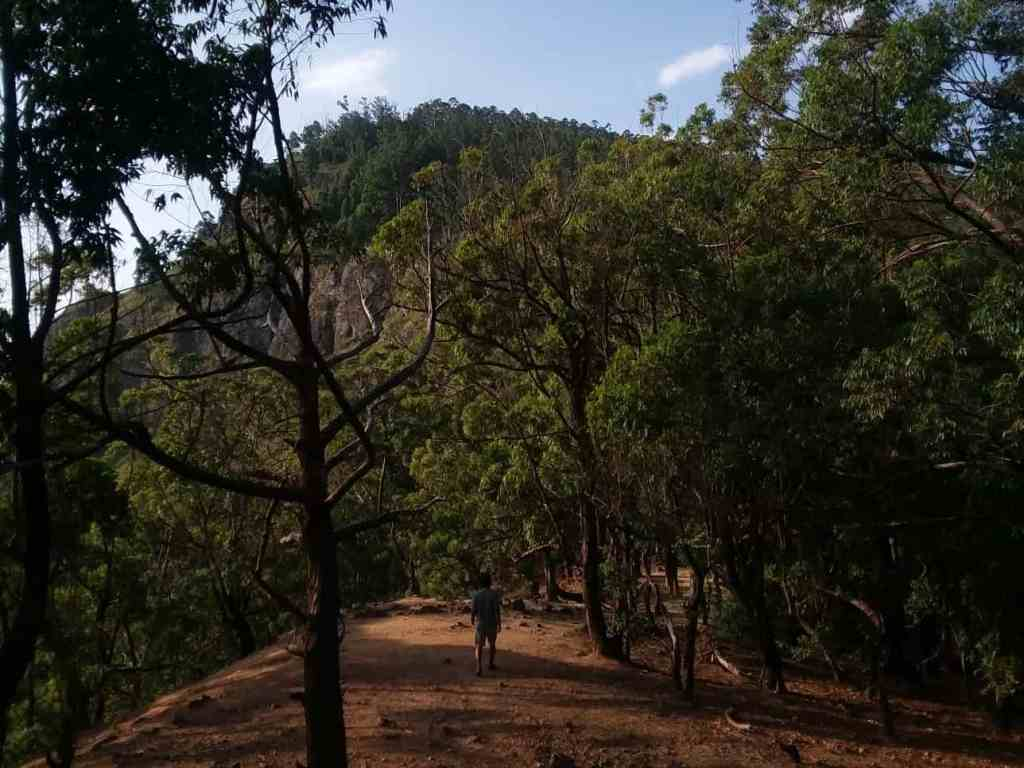 Top Experiences in Ella; hike Ella Rock