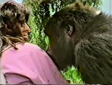 Evelyn with a Mountain Gorilla