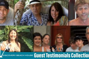 Guest Testimonials collection video