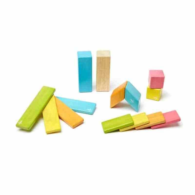tegu-magnetic-wooden-blocks-tegu 14 piece-tegu tints