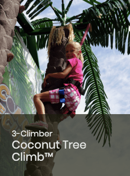 3 Climber Coconut Tree Climb