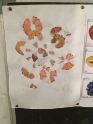 A student's work using pencil shavings