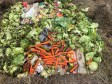 LC swales soil creation project - green waste