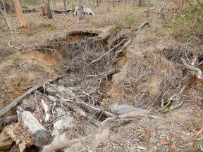 gully erosion