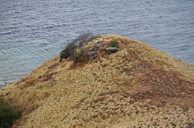 pulau kenawa