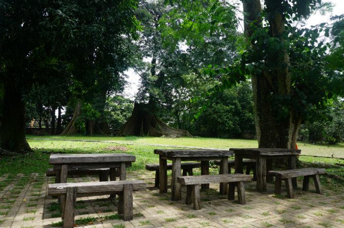 garden in Bogor