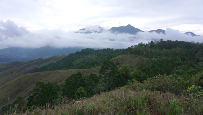 Cyclops mountain  from Ifar Gunung