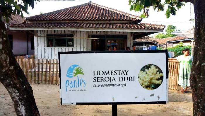 Homestay in Paniis village Indonesia