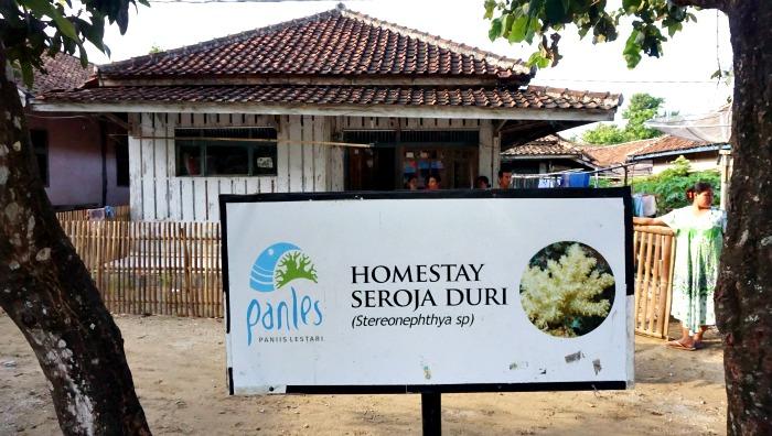 Homestay in Paniis village Indonesia