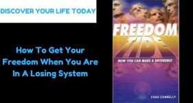 How To Get Your Freedom When You Are In A Losing System