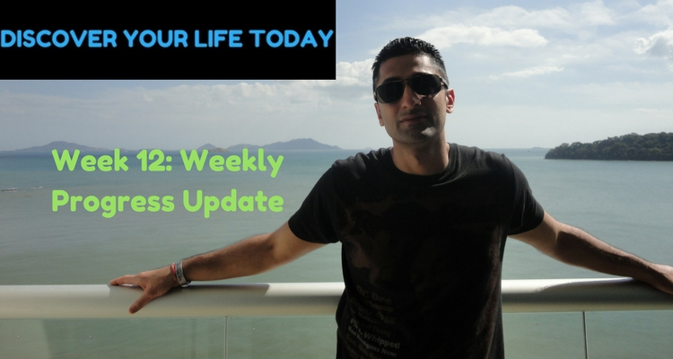 Week 12: Weekly Progress Update