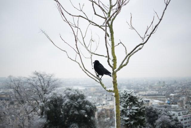 Montmartre Paris @discret