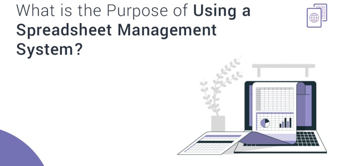 What Is the Purpose of Using a Spreadsheet Management System?