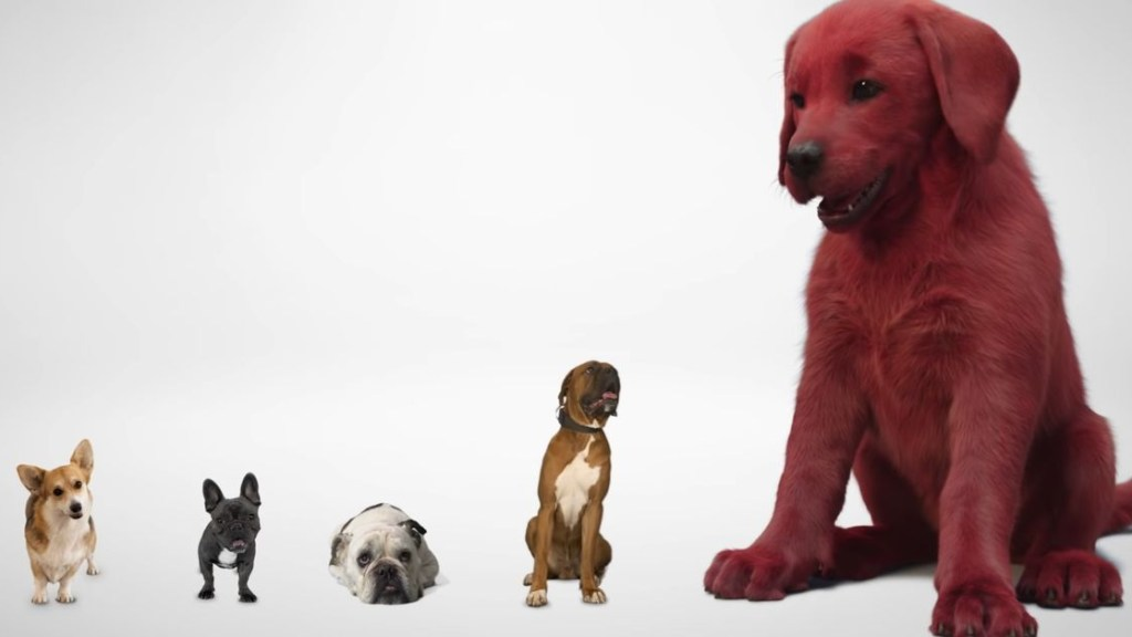 A still of live-action Clifford the Big Red Dog next to smaller real life dogs, the film is scheduled with a 2021 release date from Paramount.