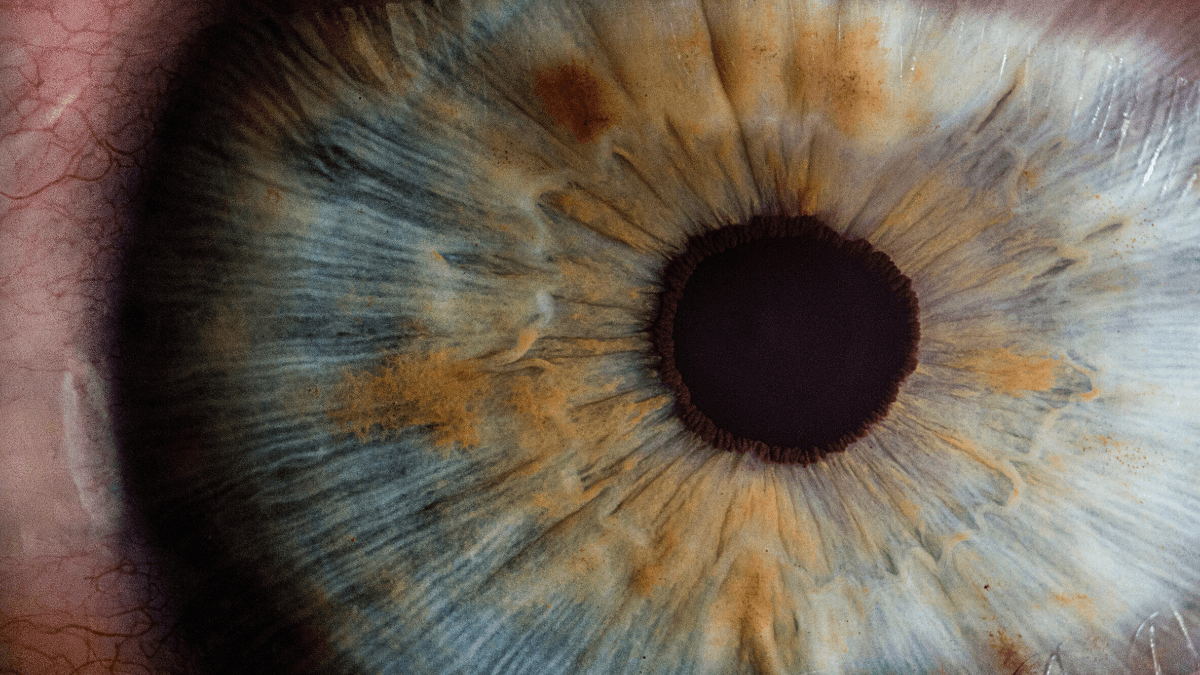 A 3D render of your eye under a microscope