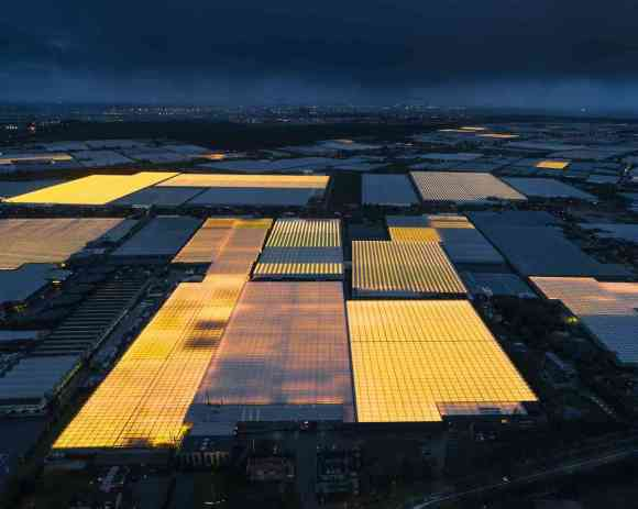 "Netherlands use agricultural density through ""architecture"" to feed the world"