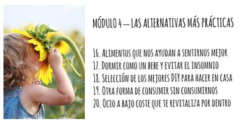 modulo4c-educacion-alternativa-online
