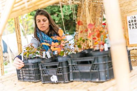 AgroChambao La Noria Málaga autoconstruido en caña maria hidalgo