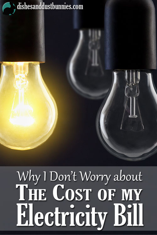 Why I Don't Worry about The Cost of my Electricity Bill