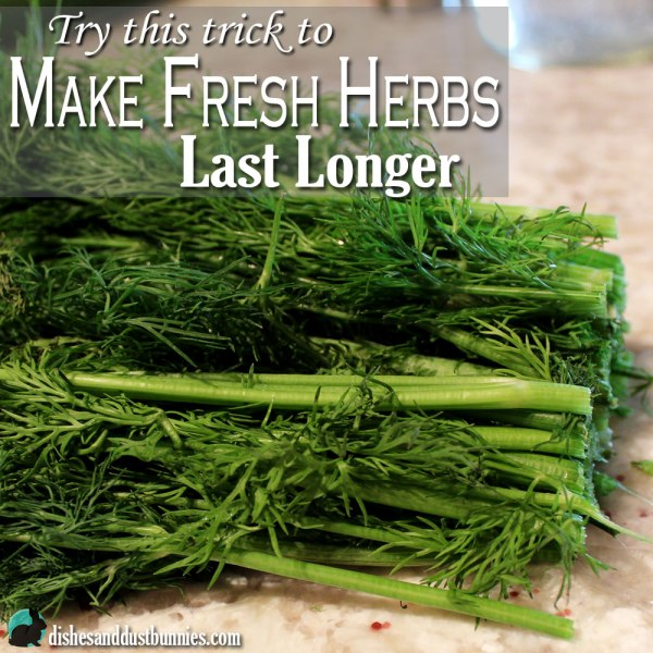 Make Fresh Herbs Last Longer – Try this trick!