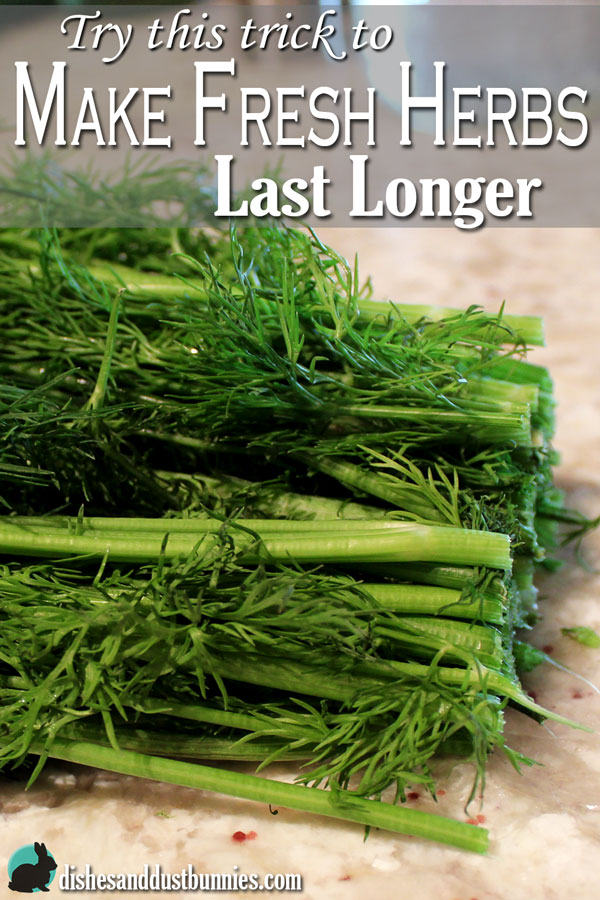 Try this trick to Make Fresh Herbs Last Longer