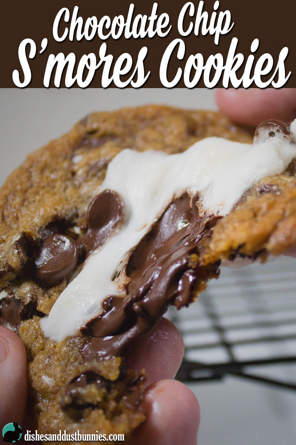 Chocolate Chip S'mores Cookies from dishesanddustbunnies.com