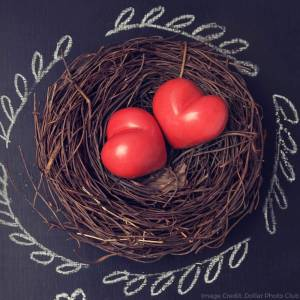 5 More Family Traditions for a Memorable Valentine's Day from dishesanddustbunnies.com