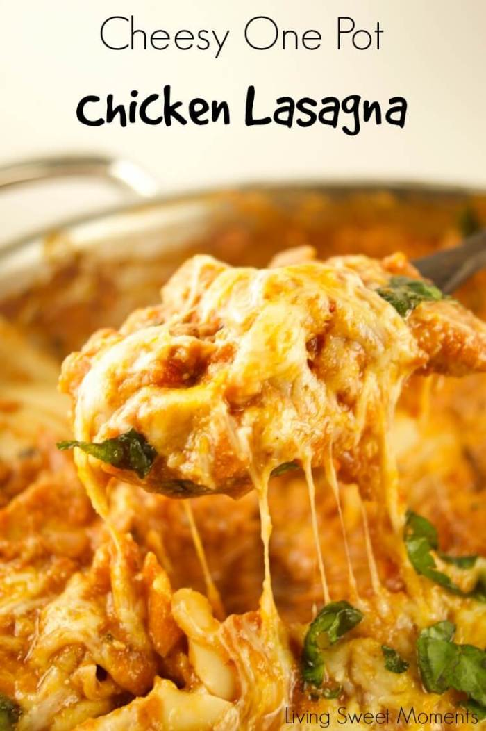 Cheesy One Pot Chicken Lasagna from Living Sweet Moments