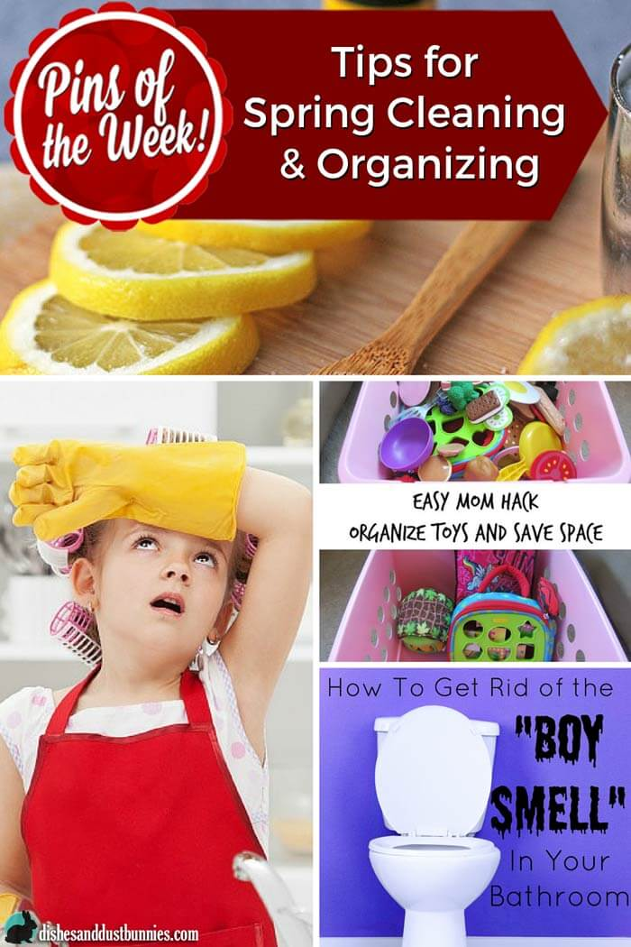 Tips for Spring Cleaning and Organizing - Pins of the Week! from dishesanddustbunnies.com
