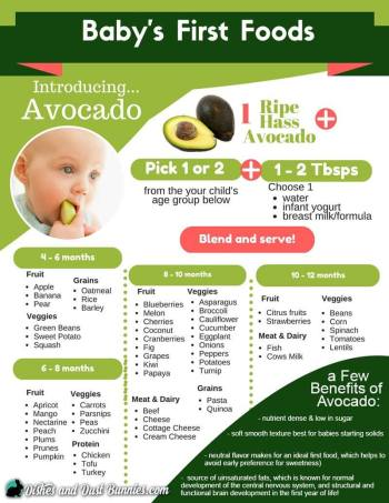 avocado-baby-food-sheet