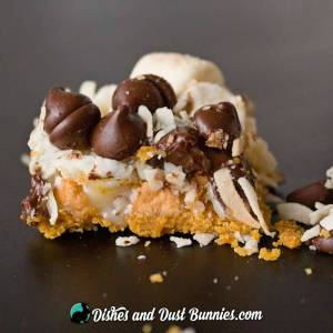 7 Layer Magic Bars from dishesanddustbunnies.com