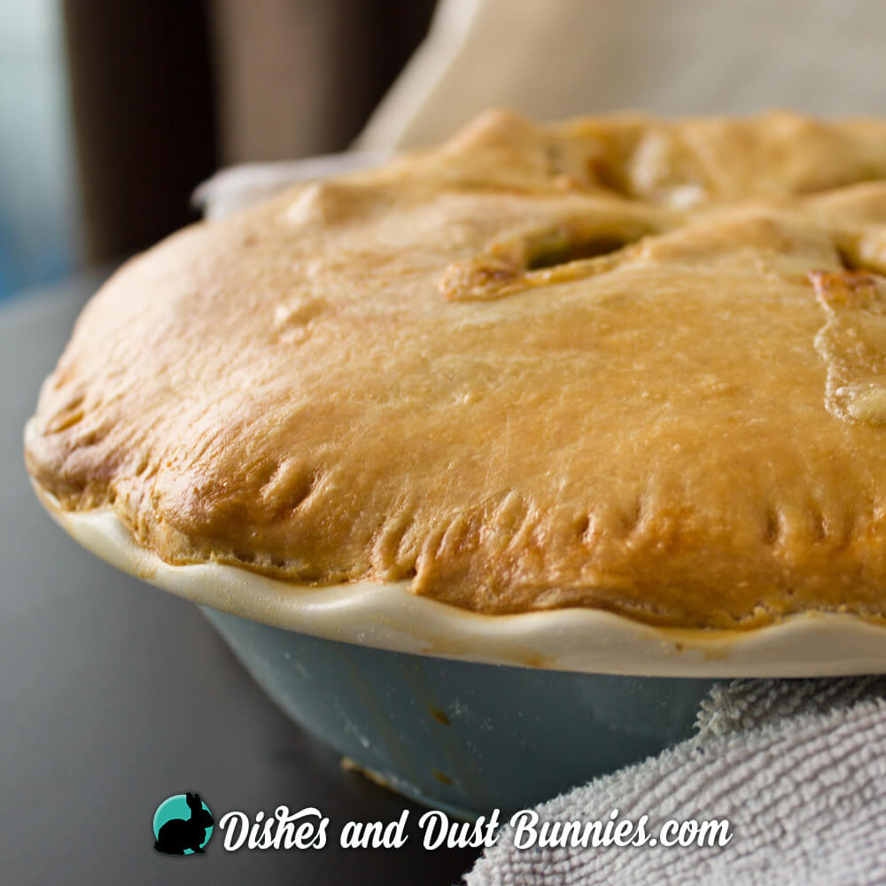 Old Fashioned Chicken Pot Pie from Dishes & Dust Bunnies