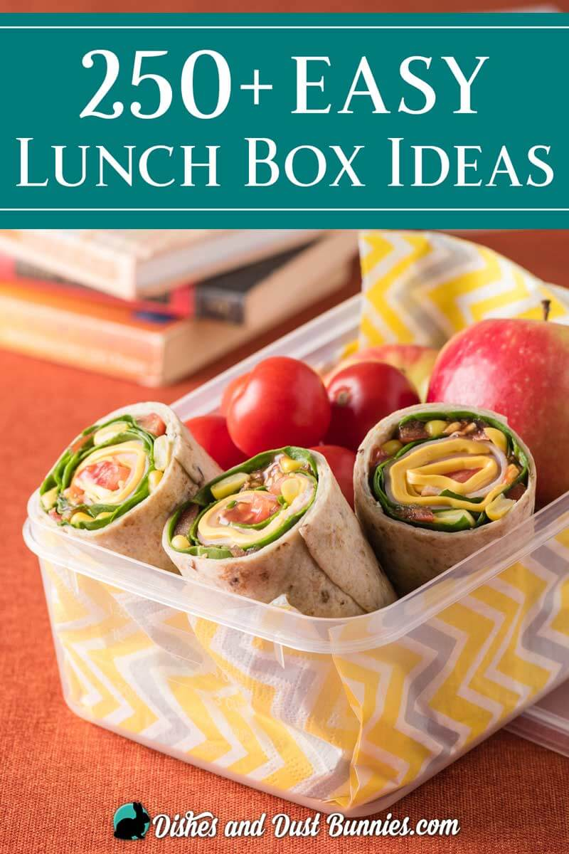 250+ School Lunch Box Ideas - dishesanddustbunnies.com
