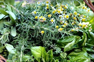To give long cooking stews added flavor add a simple bouquet made from fresh herbs: Parsley sprigs, Thyme, Bay leaf and tied with butcher/kitchen string.