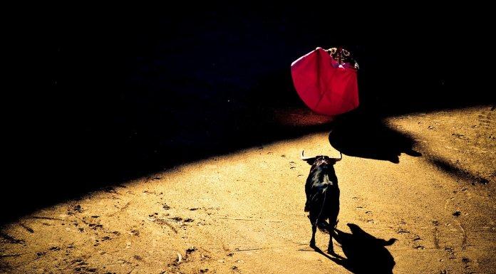 Hispanofobia y corridas de toros