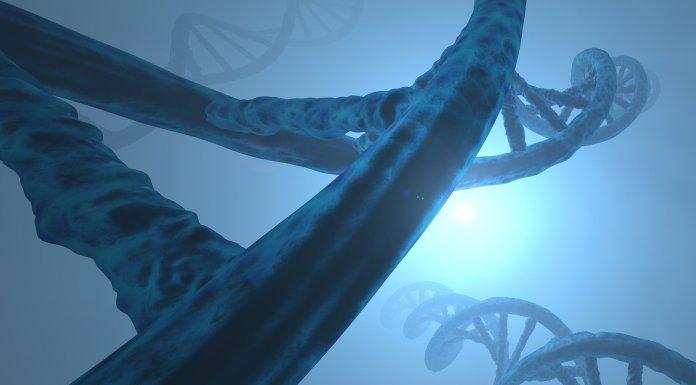 El monstruoso alarmismo contra la modificación genética