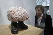 jan fabre - brain of vincent van gogh