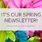 close up of colorful daisies. Text reads It's our spring newsletter!