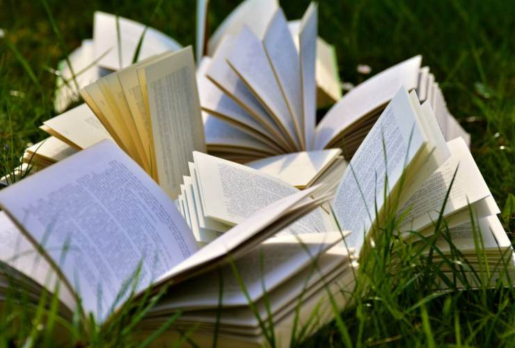 muslim authors. book pages books close up grass